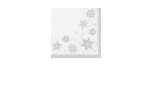 Weihnachtsservietten 48x48 cm